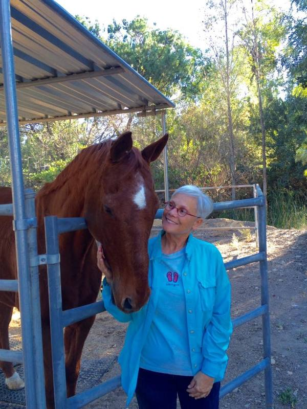 Animal Reiki: Specializing in Equine Reiki - Carlsbad, CA