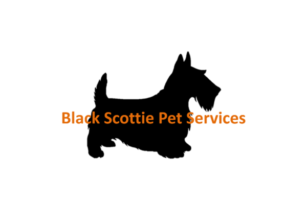 Pet Sitting Professional - Fayetteville, NC