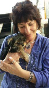 Overnight Pet Sitting - Sunnyvale, CA