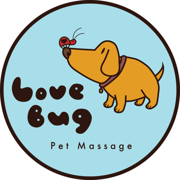 Love bug website badge