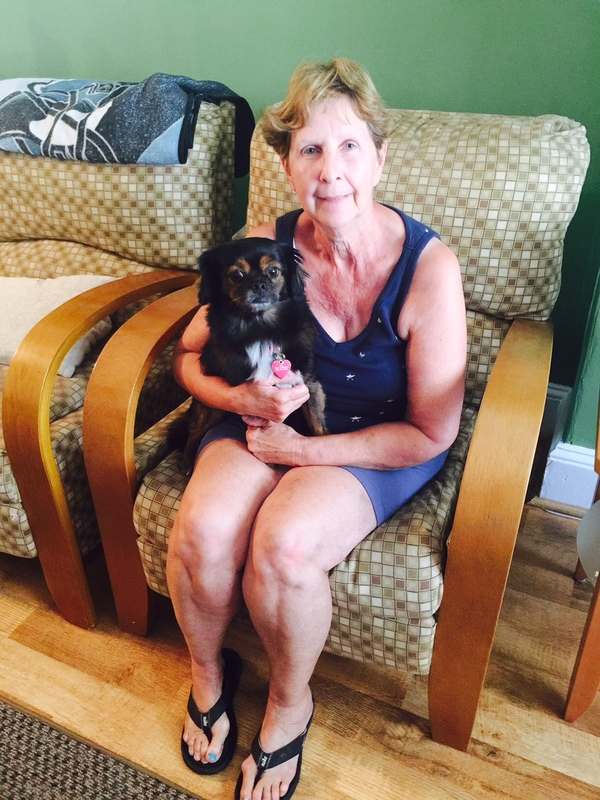 Puppy Love Carol's Dog  Walking/Small Dog Sitting Service