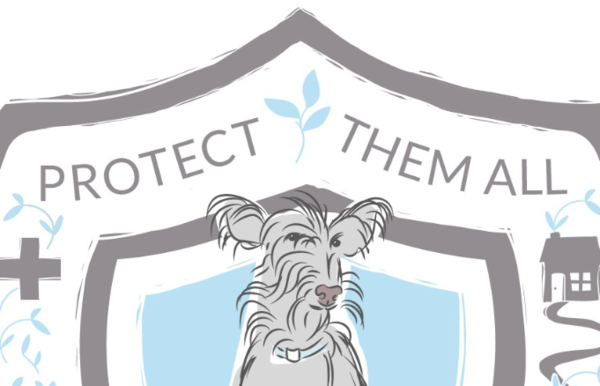 Protect Them All :  Helping People Help Dogs - Gearhart, OR