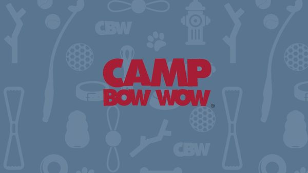 Camp Bow Wow Doggy Daycare - Middlesex, NJ