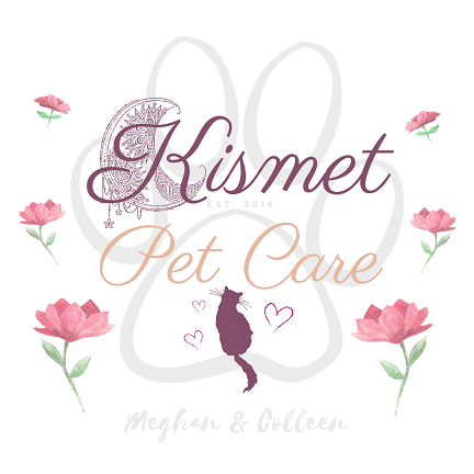 Kismet Pet Care - Milford, MA