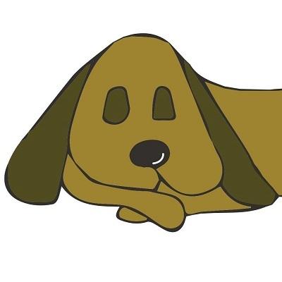 Sleepydog Kennel Doggie Daycare & Boarding - Colchester, VT