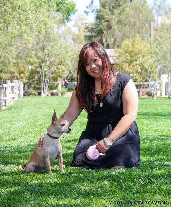 Dog Training in Pasadena/SGV area - Pasadena, CA