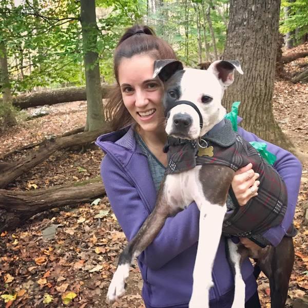 Reiki for Pets - Baltimore, MD