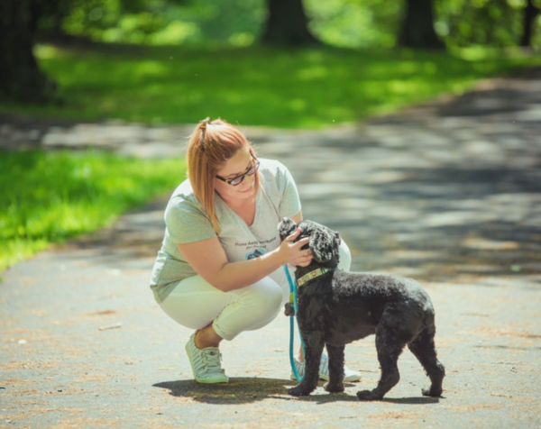 Home Away From Home Pet Services - Belleville, NJ