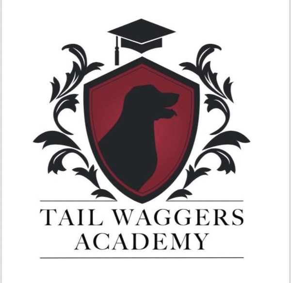 Tail Waggers Academy  - Lower Level, Newtown, PA - lower level, Newtown