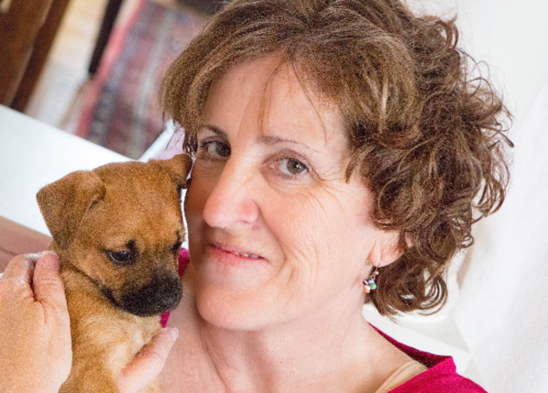 Social Tailwaggers Dog Training and Behavior Consultation - Laurel, MD