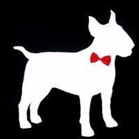Dapper Dogs Premier Grooming Salon - Cypress, TX