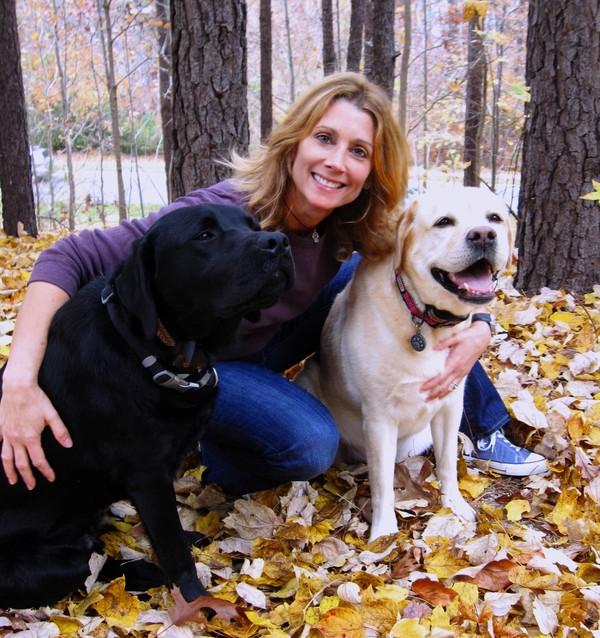 Dog Behavioral Training - Raleigh, NC