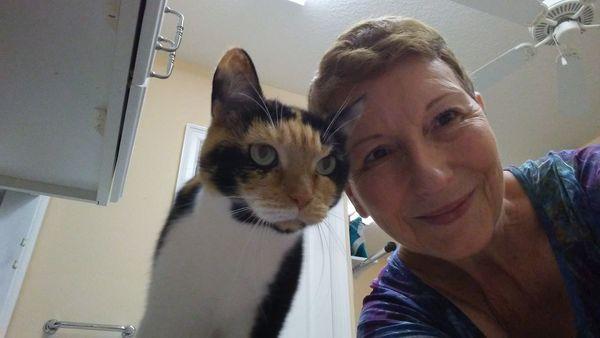 Chase'n Tails Pet Care, LLC - Bradenton, FL