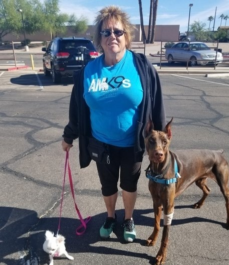 Awesome Mannered K-9s - Scottsdale, AZ