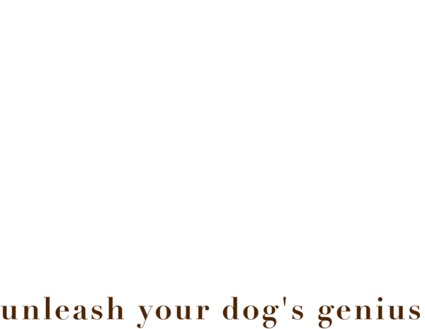 Dog Savvy Los Angeles