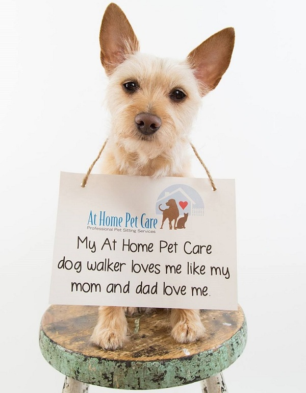 At Home Pet Care, LLC - St Paul, MN