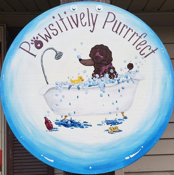 Pawsitively Purrrfect Pet Grooming LLC - Reedsburg, WI