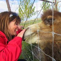 Animal Communicator, Reiki Master & Animal Reiki - Alberta