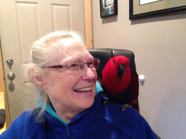 Spirit Touch Healing/Diane Garwood - Spokane, WA