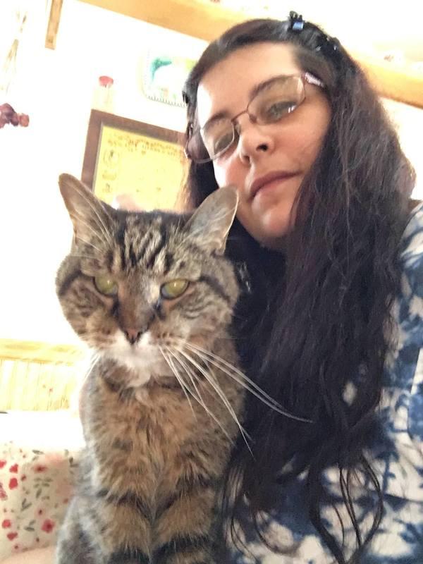 Dana's Pet Sitting - Ansonia, CT