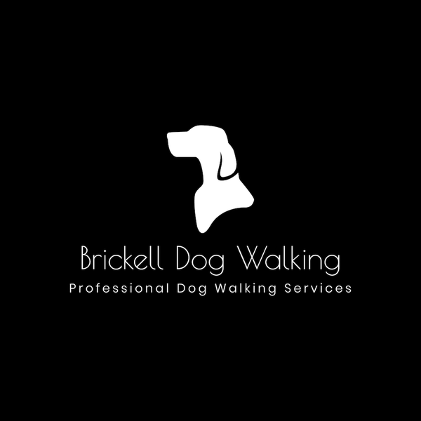 Brickell Dog Walking - Miami, FL
