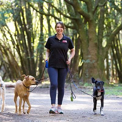 Fetch Pet Care - Petaluma, CA
