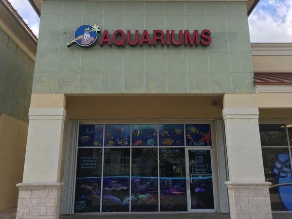 Neptunes Aquariums - Hialeah, FL