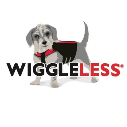 Wiggleless Back Brace - Oxnard, CA