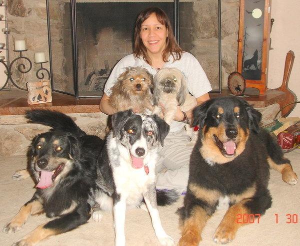 American Canine Training - Henderson, NV