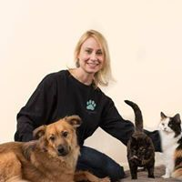 Animal Communication, Energy Work, Massage, Essential Oils