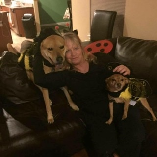 Daisy Mae's Pet Service, LLC  - New Carlisle, OH
