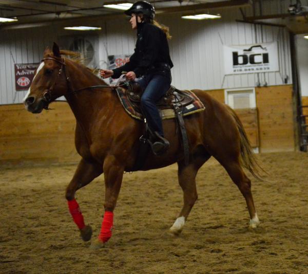 Horse Boarding/Training barn - Fergus Falls, MN