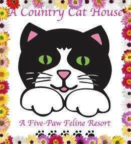 Country cat house