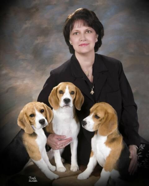 Lorna Boydston Animal Massage - Deer Park, WA