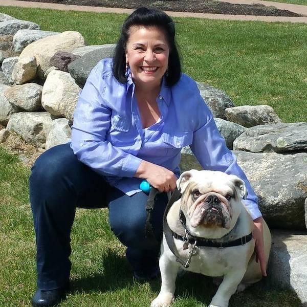 Animal Healing Session - Danvers, MA