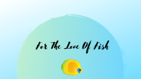 For The Love Of Fish - Eugene, OR