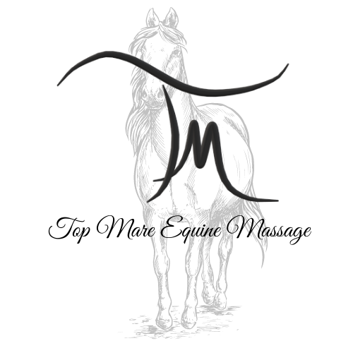 Top Mare Equine Massage LLC - Sioux City, IA