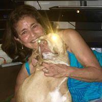 Healing Animals and People Together - Carpinteria, CA