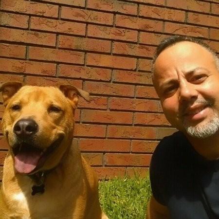 Pawsitive Pet Balance, LLC - Lake Mary, FL