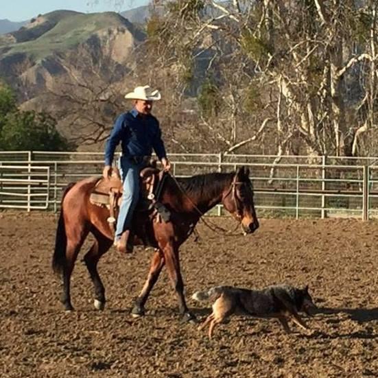 Gibson Ranch - Shadow Hills, CA