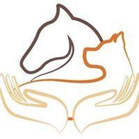 Ahmazing Animal Wellness - Glastonbury, CT