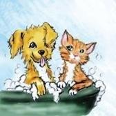 Cute Cuts Pet Grooming - Largo, FL
