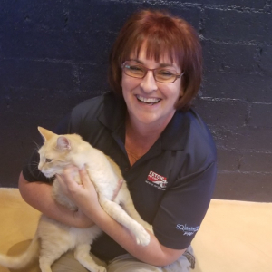 Fetch! Pet Care - Tucson, AZ