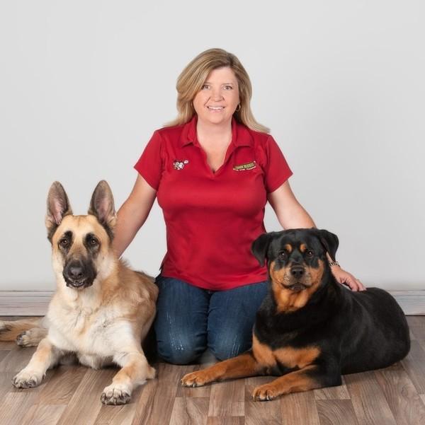 Bark Busters Phoenix - Goodyear, AZ
