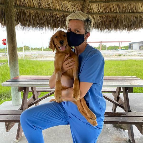 Progressive Choice Animal Care - Pembroke Pines, FL