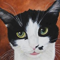 Carrie's Cat Sitting Service - Wellsville, NY