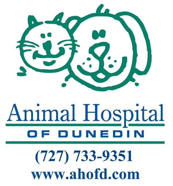 Veterinary Services - Dunedin, FL