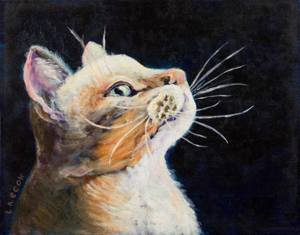 Pet Portraits by Lynda - Carlisle, PA