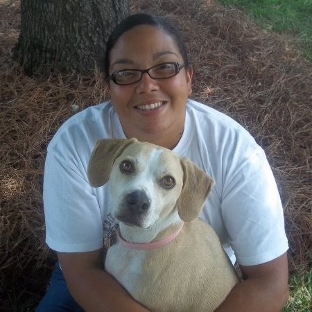 Chloe's Playhouse Pet Sitting and Dog Walking Service - Charlotte, NC