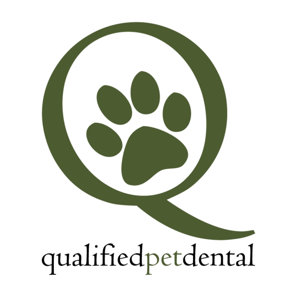 Dog Teeth Cleaning. Cats, too! - Los Angeles - Costa Mesa